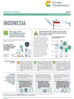Laporan Brown to Green 2019 Profil Indonesia
