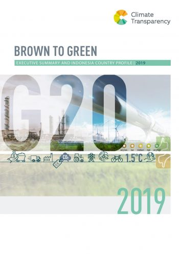 Brown to Green 2019 Execuitive Summary and Indonesia Country Profile-page-001