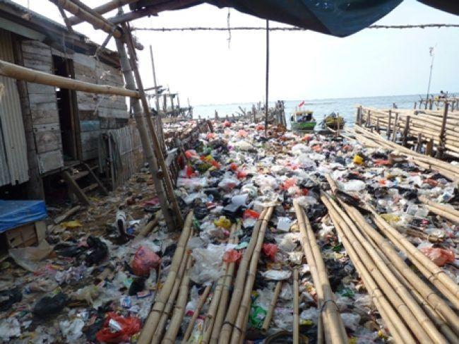 tumpukan-sampah-di-sekeliling-rumah